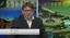 TV Assembleia - entrevista presidente (3).png
